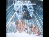 PACHAMAMA Music from North &amp South AMERICA - Ponchito