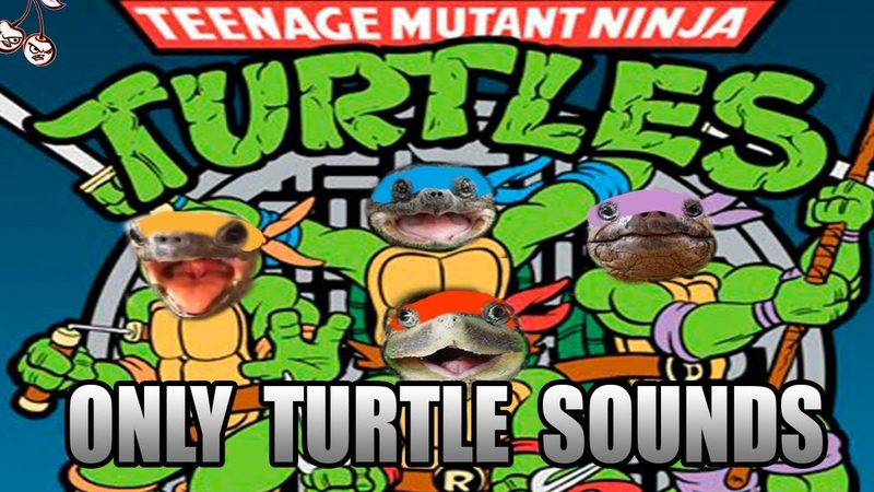 Teenage Mutant Ninja Turtles main theme but its made with only turtle sounds