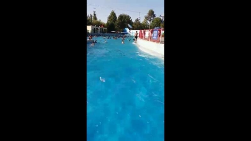 Ташкент шаһары. Бассейн. Толқын