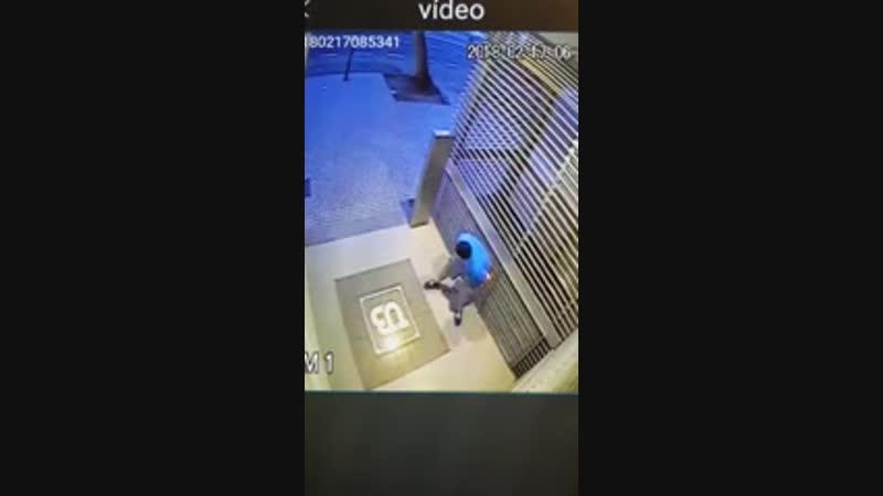 Cagou e escorregou na propria merda