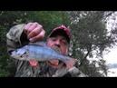 Рыбалка Две ночи на Оке И в зной и в дождь проливной