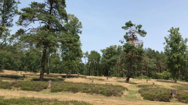 2018.07 кладбище военнопленных Херстен - Hörsten, KZ Берген-Бельзен, Ганновер, Нижняя Саксония