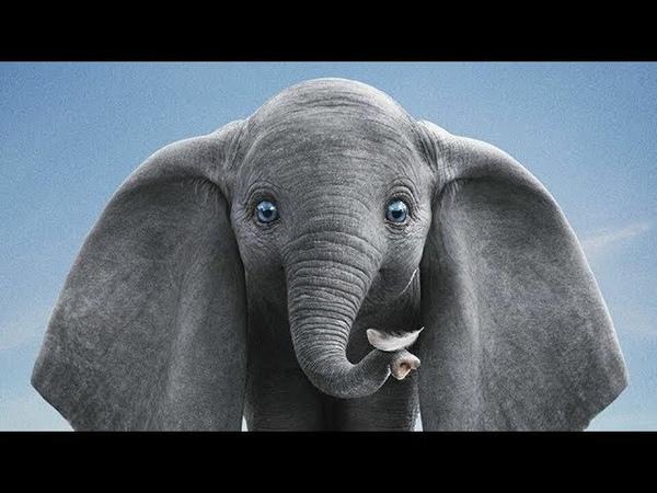 Новые Зарубежные Приключенческие Мультфильмы 2015 года списком смотреть или скачать на русском