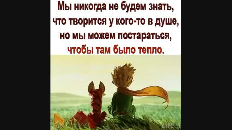 Facebook 298957987305247(720p).mp4