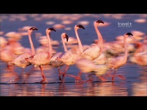 Путешествие с фотографом на край географии. Кения