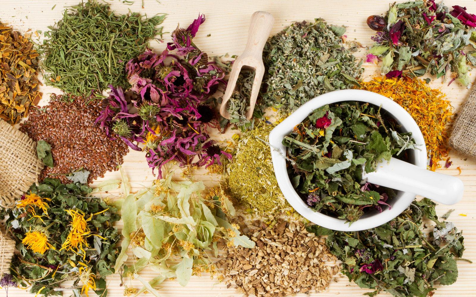 Какие обычно используются растения в травяной медицине?