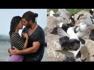 CanEm  that simple - Just do it like these Albatross - And now KISS you two - ErkenciKu CanYaman Demetzdemir Sadece