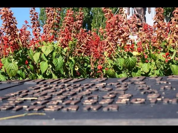 СТАХАНОВ. МЫ ПОМНИМ. 75я годовщина освобождения города от немецко-фашистских захватчиков