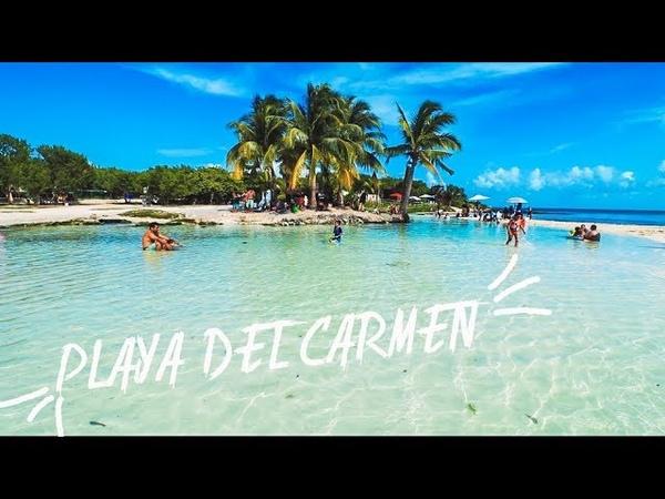 Playa del Carmen HOY 28 08 2018 Sargazo Playa 88 Punta Esmeralda adunadjtv