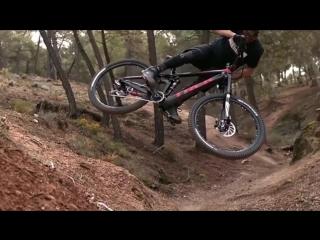 Велосипедисты в лесу