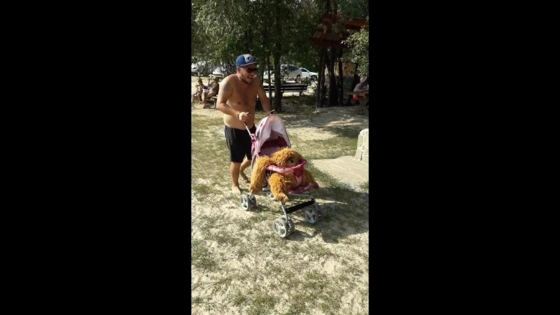 Саша катает обезьянку в коляске
