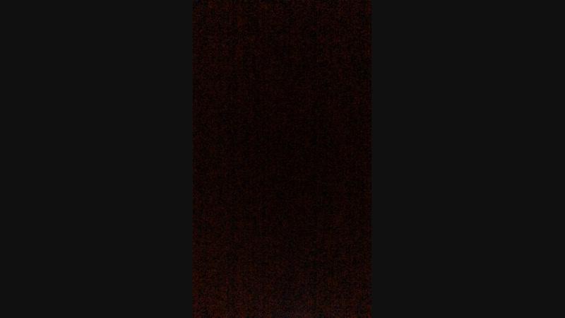 Слава Каминский — Live