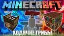 Minecraft Сборка 1 - Ходячие Грибы