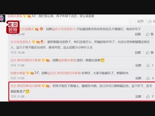 Китаянка упала в вольер к пандам
