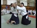 Семинар по Айкидо в Москве (Жерар Блез) / Aikido seminar in Moscow (Gerard Blaise)