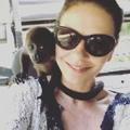 Catherine Zeta-Jones on Instagram Merry Christmas one and all