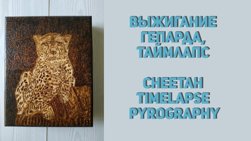 Выжигание гепарда, таймлапс Cheetah timelapse pyrography