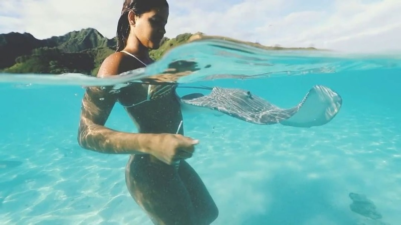 """JÚLIA MUNIZ on Instagram: """"We're in the water 🌈🌈🐠 French Polynesia is so amazing! I had such a magical moment getting to observe and swim with thes..."""