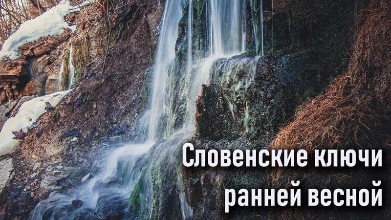 Словенские ключи ранней весной, Изборск, лебеди на Городищенском озере