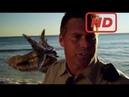 Best Fight Scenes - Sand Sharks All Sand Shark Scenes