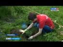 Онлайн-квест «Марафон добрых дел» стартовал в Новосибирске