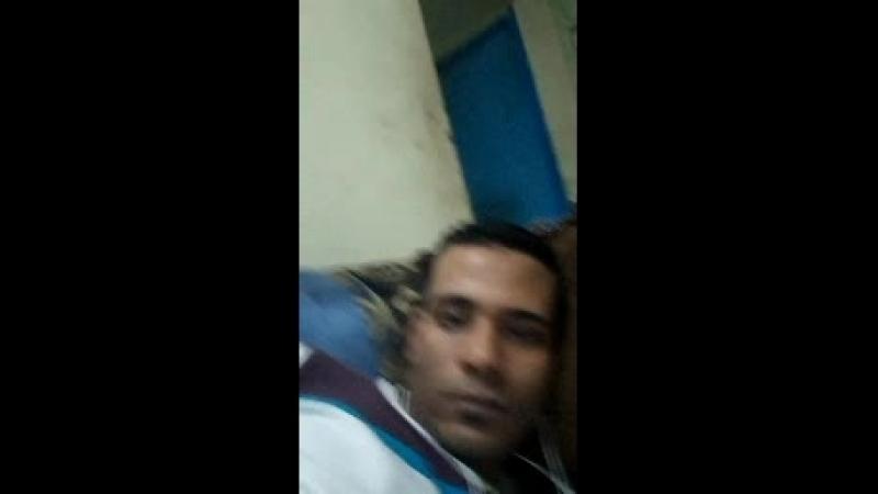 Amar Amar Abo Elshe Live