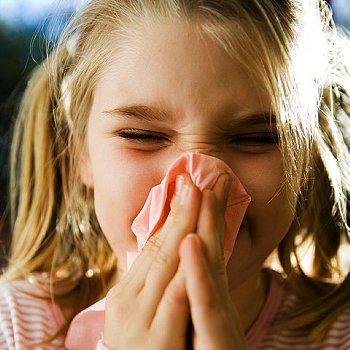 Сезонный грипп - это острая респираторная инфекция, вызываемая вирусами гриппа, которые распространяются во всех частях света.