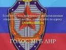Сказ о пьяном стрелке в тире и стрельба из РПГ в кафе Кавказ