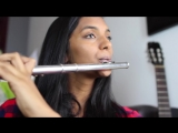 Drag Me Down - One Direction Flute Cover