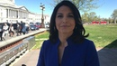 Rep. Tulsi Gabbard on House Passage of the Save the Internet Act