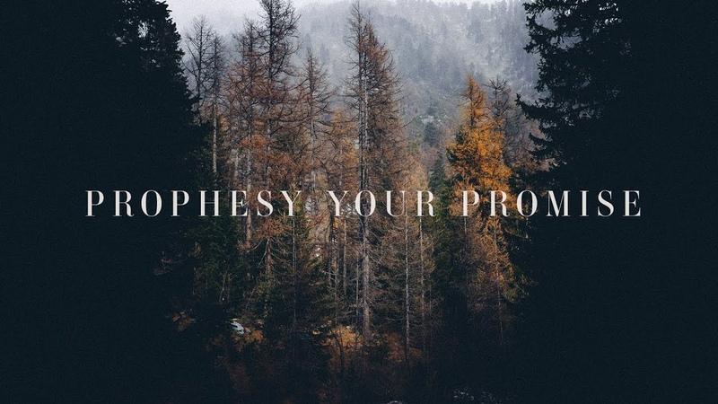 Prophesy Your Promise (Lyrics) ~ Bryan Katie Torwalt