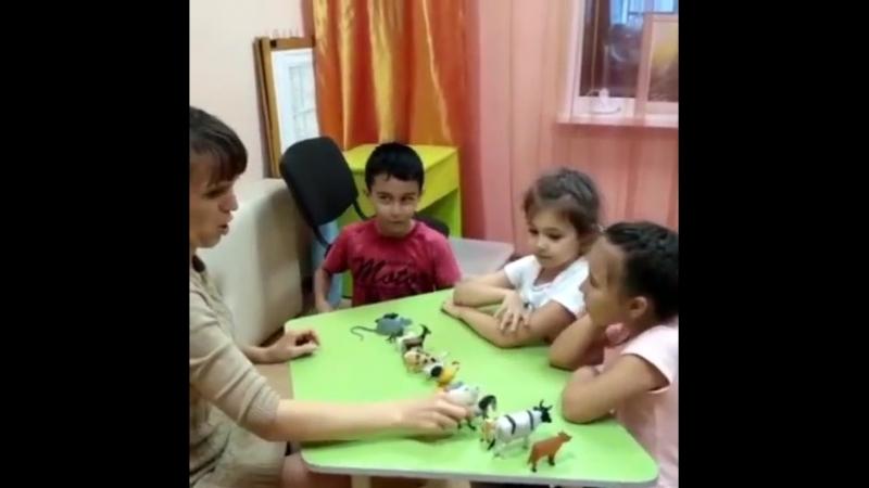 Детям так нравится изучать Английский язык с нашим харизматичным преподавателем Гульназ Расиховной! . Уж она-то умеет увлечь реб