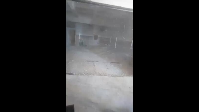 Соликамский пейнтбольный ... - Live