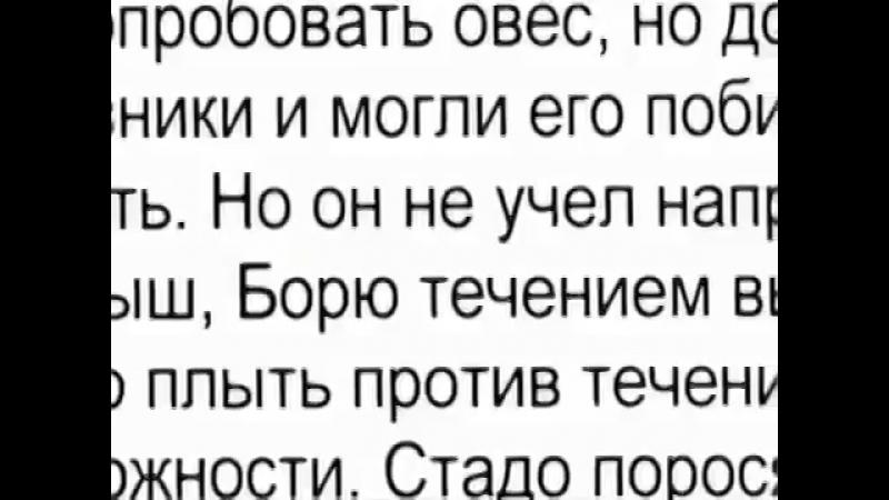 Слово об образовании в СССР