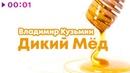 Владимир Кузьмин - Дикий мёд | Official Audio | 2018