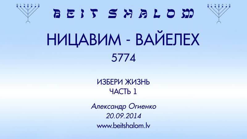 «НИЦАВИМ»|«ВАЙЕЛЕХ» 5774 часть 1 «ИЗБЕРИ ЖИЗНЬ» А.Огиенко (20.09.2014)