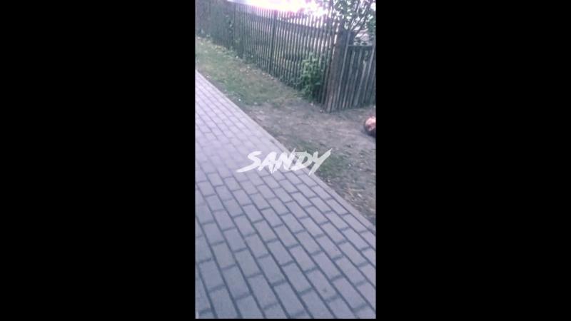 SandY Уебал