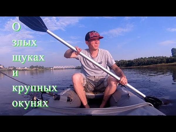 Басня О злых щуках и здоровых окунях - Болен Рыбалкой №541