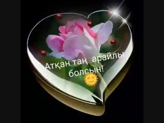 VID_58950219_084300_134.mp4