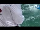 Гигантский окунь проглотил акулу на глазах у рыбаков