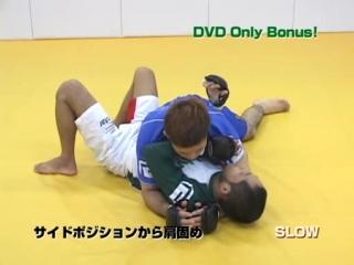 Hiroshi.MMA manual.Vol2