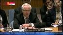 Виталий Чуркин уделал Саманту Пауэр на заседании Совбеза ООН!