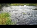 река, мошка, природа, тишина