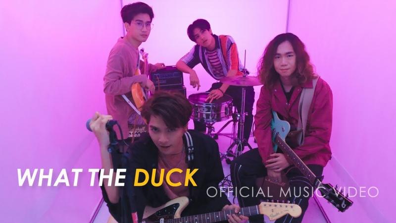 De Flamingo - PINK [OFFICIAL MV]
