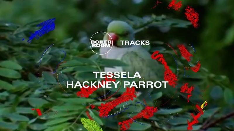 Rave belter to match the 90s originals? Tessela's massive Hackney Parrot | Boiler Room
