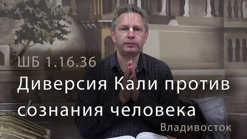 2019 06 04 ШБ 1 16 36 Диверсия Кали против сознания человека Владивосток кафе Ганга