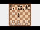 Вариант Берда. Обучение шахматам. Испанская партия