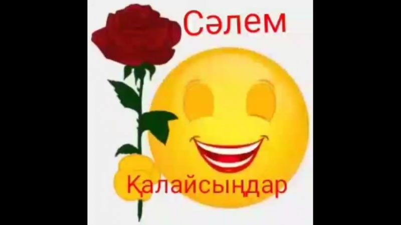 VID_25531210_233827_550.mp4