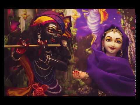Взлетайте снова и снова Ананда Вардхана Свами Ananda Vardhana Swami