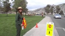 Park Ranger Protects Peds from Elk at Mammoth Hot Springs Yellowstone National Park